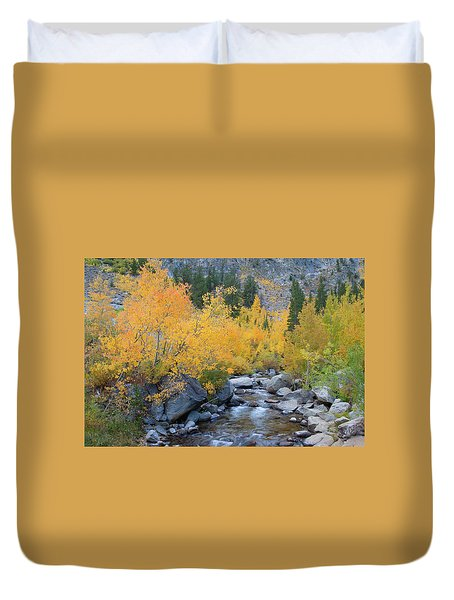 Duvet Cover featuring the photograph Fall Colors And Cascading Stream by Ram Vasudev