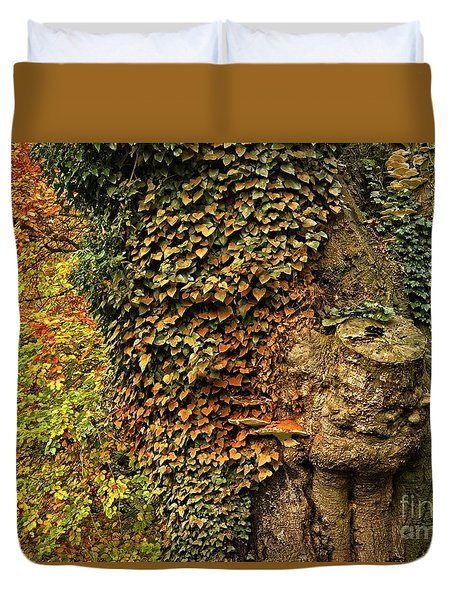 Fall Colors In Nature Duvet Cover
