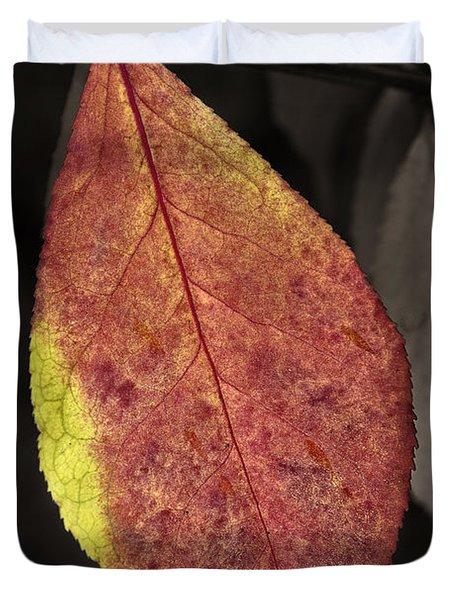 Fall Elder Leaf Duvet Cover