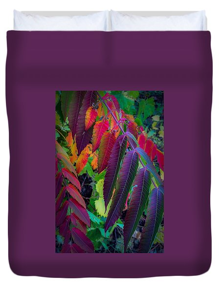 Fall Feathers Duvet Cover