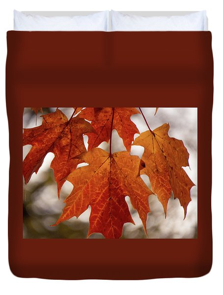 Duvet Cover featuring the photograph Fall Foliage by Kimberly Mackowski