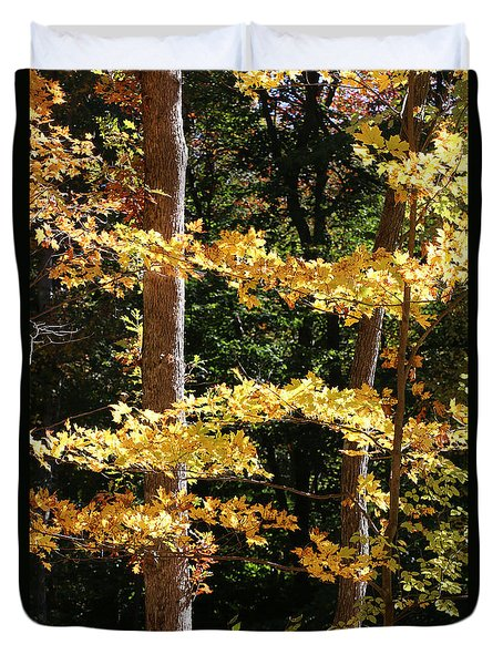 Fall Forest 1 Duvet Cover
