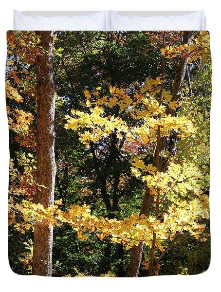 Fall Forest 3 Duvet Cover