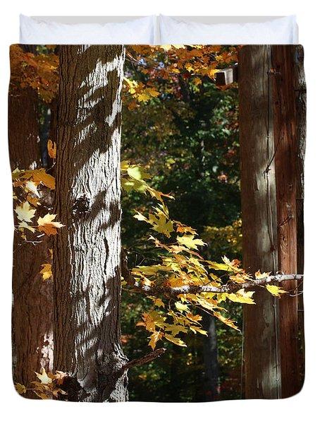 Fall Forest 4 Duvet Cover