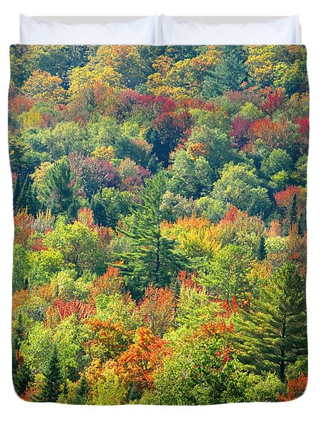 Fall Forest Duvet Cover by David Lee Thompson