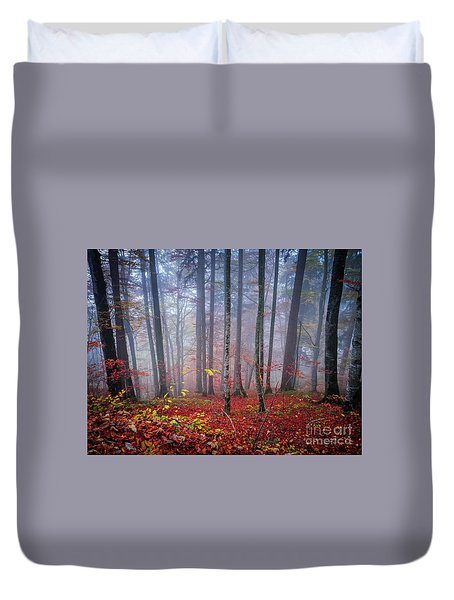 Duvet Cover featuring the photograph Fall Forest In Fog by Elena Elisseeva