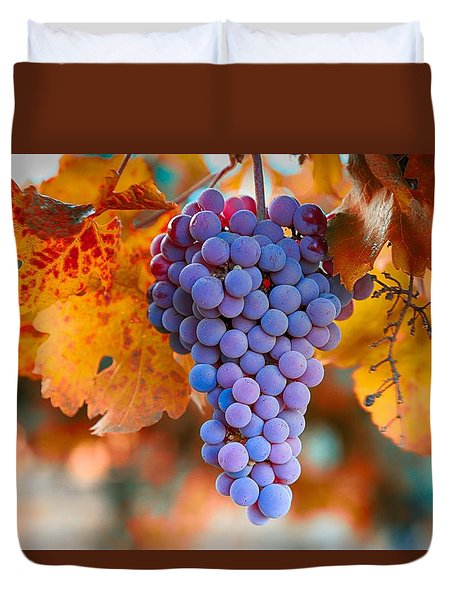 Fall Grapes From The Yakima Valley,  Duvet Cover by Lynn Hopwood
