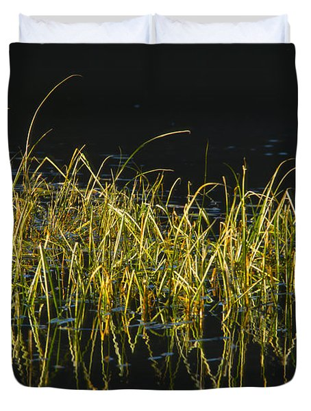 Fall Grasses - Snake River Duvet Cover