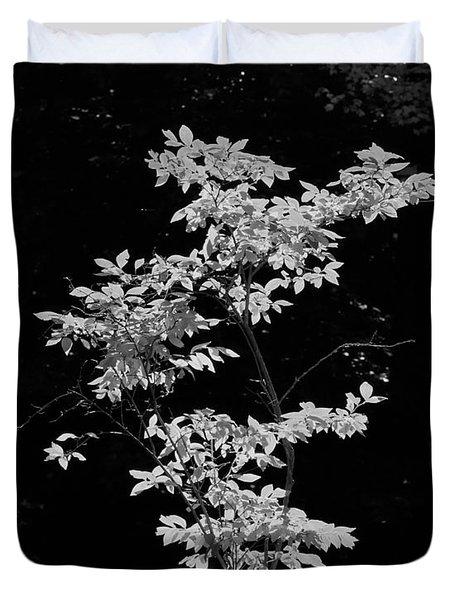 Fall Illumination In B/w Duvet Cover