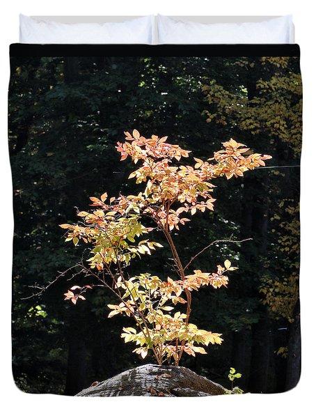 Fall Illumination Duvet Cover