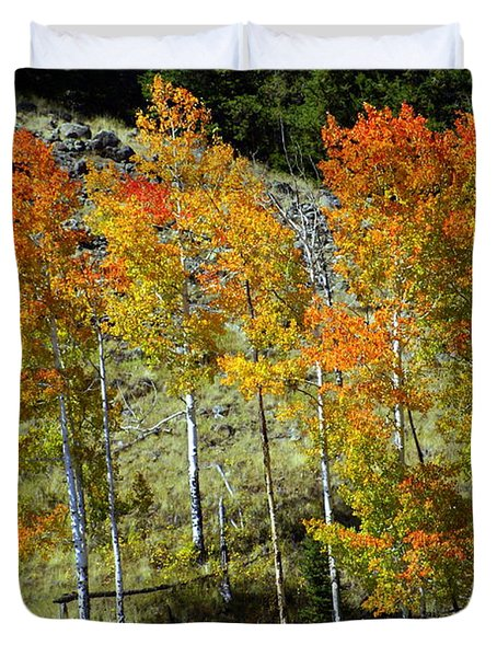 Fall In Colorado Duvet Cover by Marty Koch