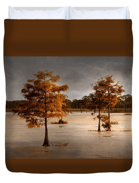 Fall In Florida Duvet Cover by Carolyn Dalessandro