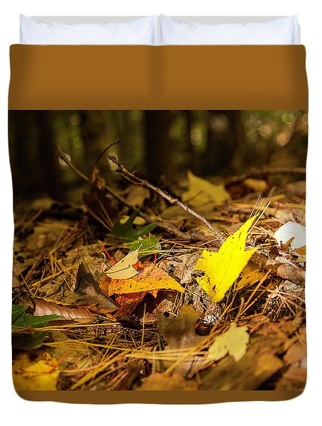 Fall In New Hampshire Duvet Cover