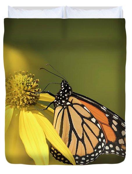 Fall Monarch 2016-5 Duvet Cover