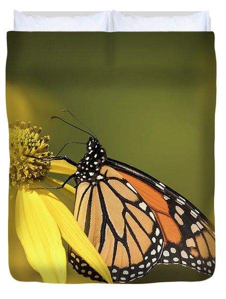 Fall Monarch 2016-5 Duvet Cover