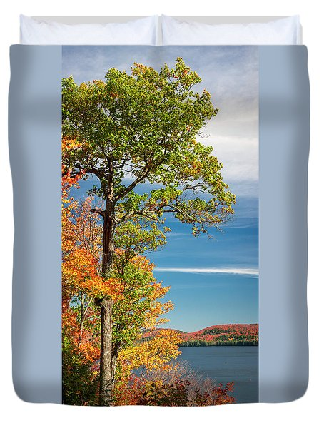 Duvet Cover featuring the photograph Fall Oak Tree by Elena Elisseeva