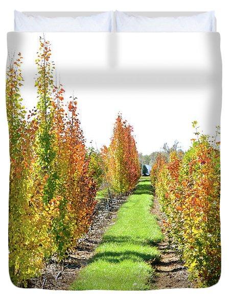 Fall On The Tree Farm Duvet Cover