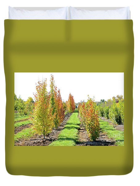 Fall On The Tree Farm Duvet Cover