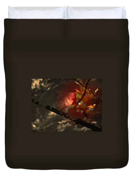 Duvet Cover featuring the photograph Fall Or Not by Richard Ricci