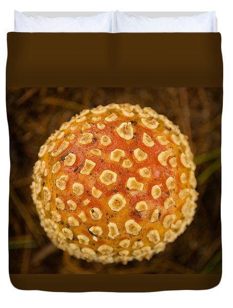 Fall Orb Duvet Cover