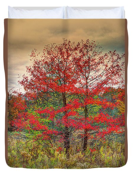 Duvet Cover featuring the photograph Fall Painting by Skip Tribby