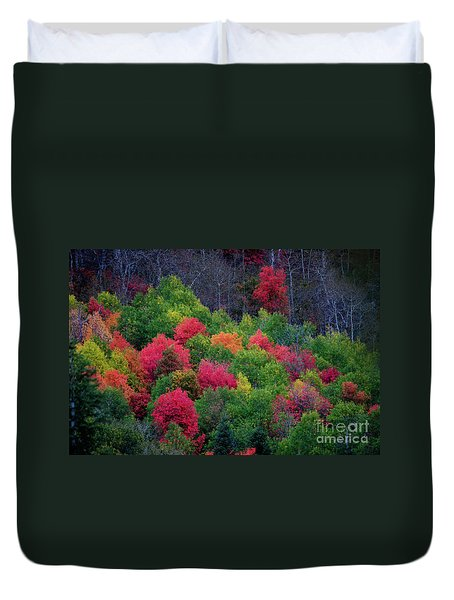 Fall Poppers Duvet Cover