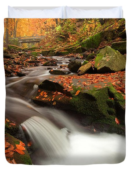 Fall Power Duvet Cover by Evgeni Dinev