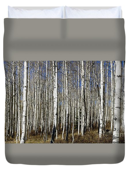Fall Quaking Aspens Panorama Duvet Cover