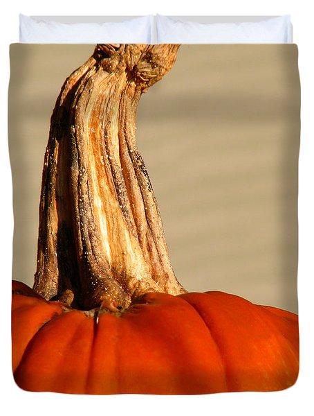 Fall Rising Duvet Cover by Amanda Barcon