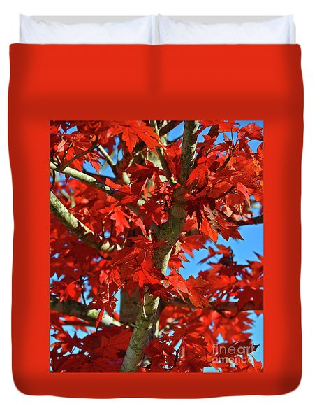 Fall Stars Duvet Cover