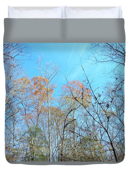 Fall Trees Duvet Cover by Kay Gilley