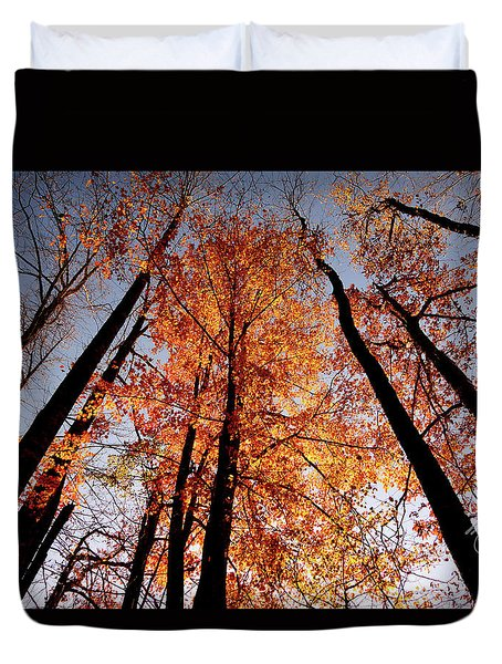 Duvet Cover featuring the photograph Fall Trees Sky by Meta Gatschenberger