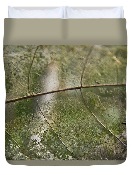 Duvet Cover featuring the photograph fallen Leaf by Debbie Cundy