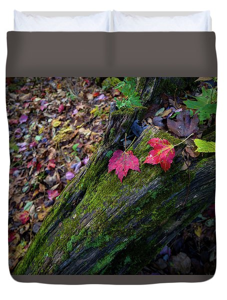 Duvet Cover featuring the photograph Fallen Leaves On The Limberlost Trail by Lori Coleman