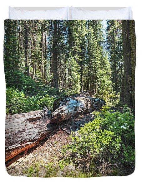 Fallen Tree- Duvet Cover