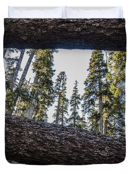 Fallen Trees Duvet Cover