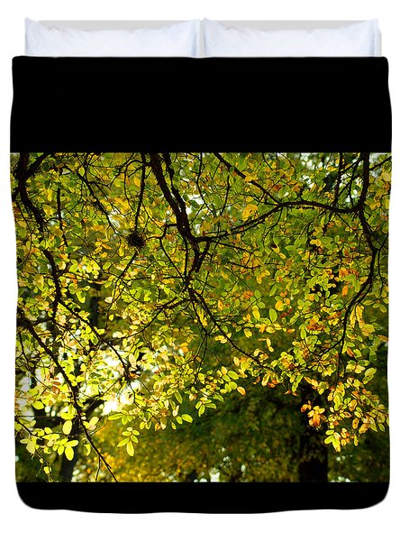 Duvet Cover featuring the photograph Fall's Unique Light by Karen Musick
