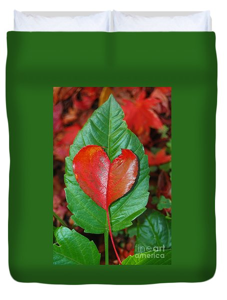 Duvet Cover featuring the photograph Fall's Vibrant Contrast by Debra Thompson