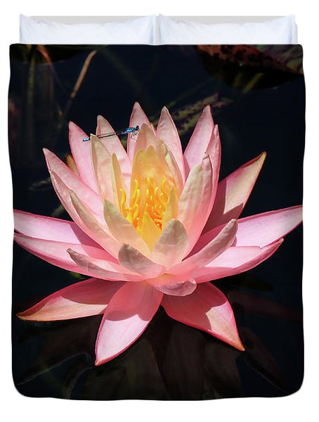 Familiar Bluet Damselfly And Lotus  Duvet Cover