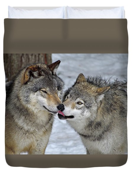 Duvet Cover featuring the photograph Familiar by Tony Beck