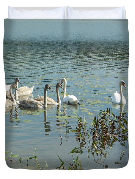 Family Of Swans Duvet Cover
