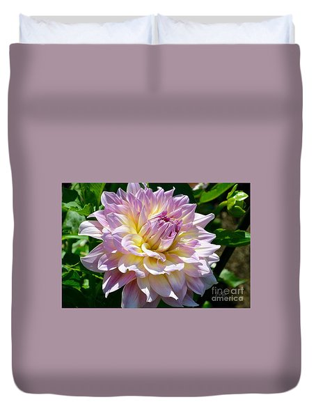 Fancy Dahlia In Pinks Duvet Cover