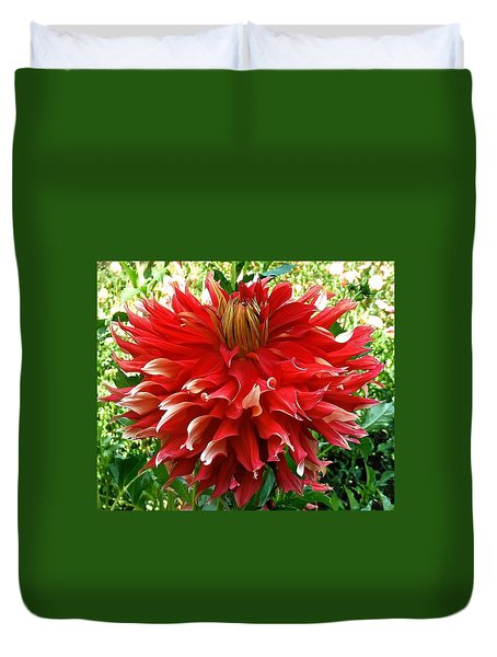 Fancy Red Dahlia Duvet Cover