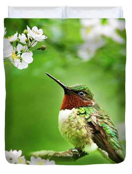 Fauna And Flora - Hummingbird With Flowers Duvet Cover