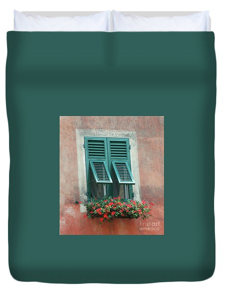 Faux  Painting Window  Duvet Cover