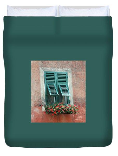 Faux  Painting Window  Duvet Cover