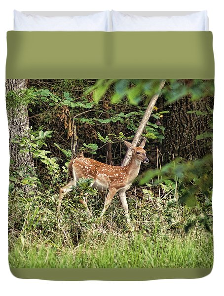 Fawn In The Woods Duvet Cover