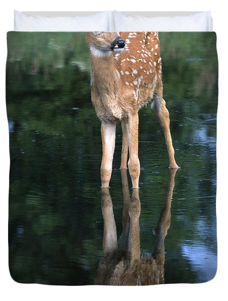 Fawn Reflection Duvet Cover by Sandra Bronstein