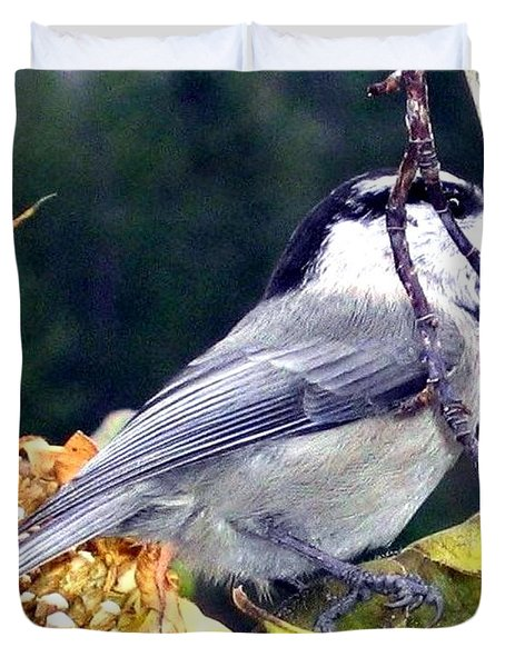 Feast For A Chickadee Duvet Cover by Will Borden