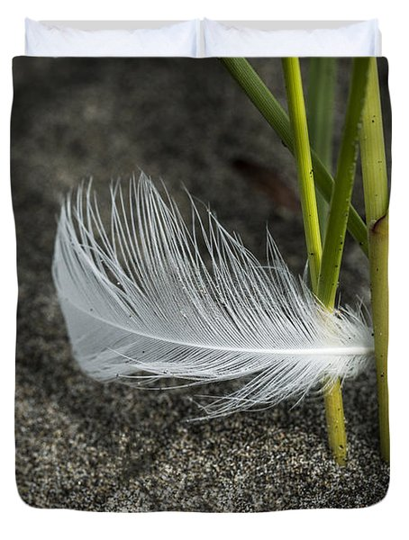Feather And Beach Grass Duvet Cover